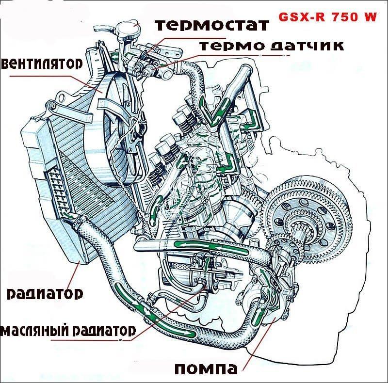 20100330130820-7380 jpg resize 1000x830  type jpg