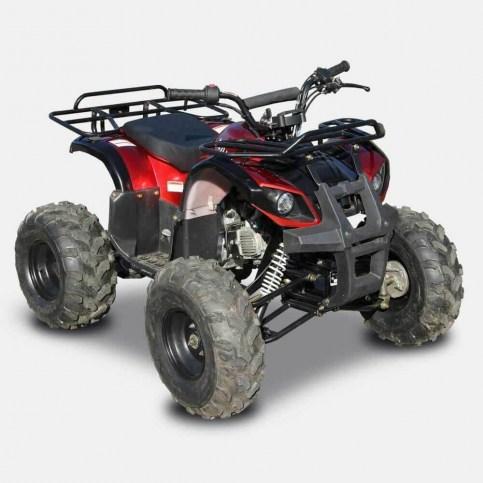 LZ110-4r   Квадроцикл