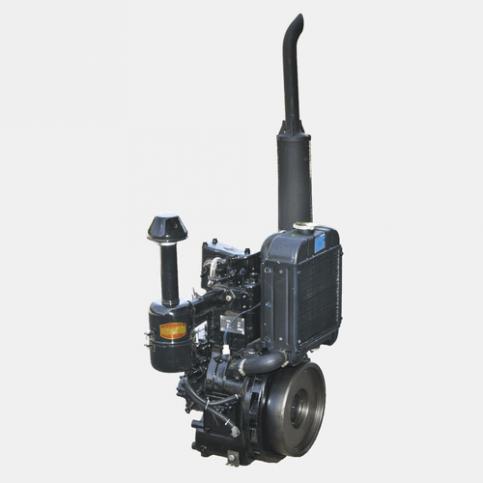 Двигатель дизельный DL190-12