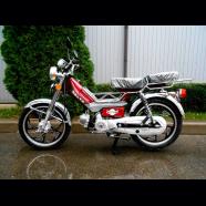Мопед Delta 110 cc   Foxwell