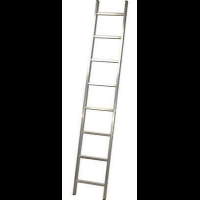 Лестница приставная 1х10
